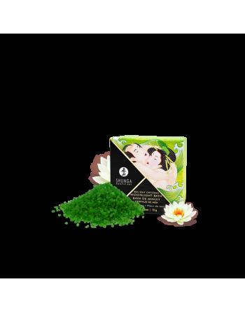 Bain de Minuit - Fleur de lotus
